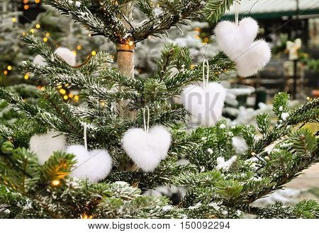 Unusual creative romantic Christmas or New Year decoration - cute white fluffy heart shape christmas toys on green spruce in winter