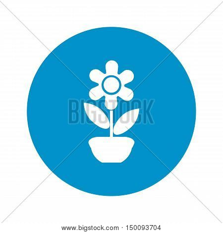flower icon on white background for web