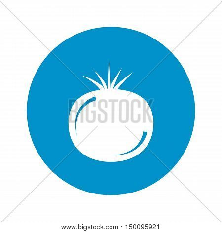 tomato icon on white background for web