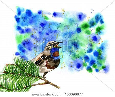 illustration of cute blue bird singing on branch