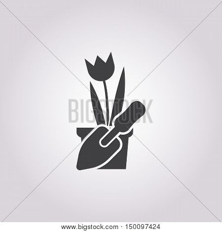 tulip icon on white background for web