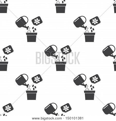 seeds icon on white background for web