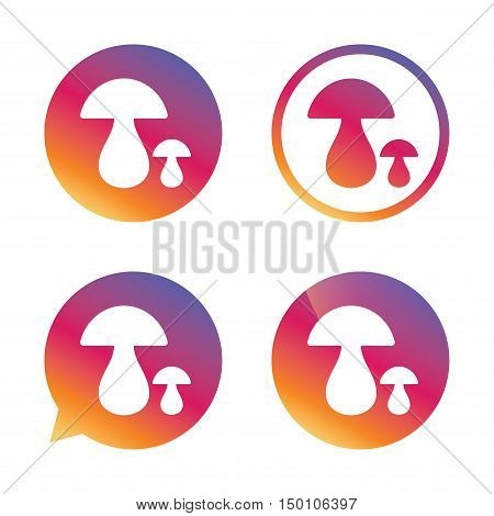Mushroom sign icon. Boletus mushroom symbol. Gradient buttons with flat icon. Speech bubble sign. Vector