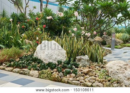 SINGAPORE - CIRCA SEPTEMBER, 2016: Cactus Garden at Singapore Changi Airport. Singapore Changi Airport is the primary civilian airport for Singapore.