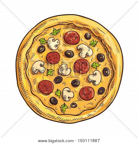 Italian pizza sketch with pepperoni sausage, black olive fruit, mushroom and basil. Pizzeria, italian cuisine restaurant, takeaway pizza box design