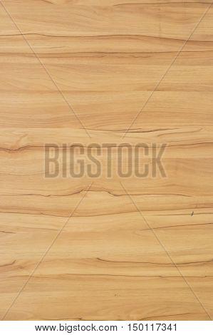brown wooden background in the big  garden