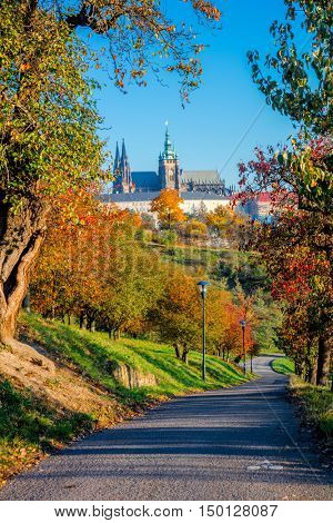 Sunny day in Prague park, colorful autumn season, Czech Republic, European city