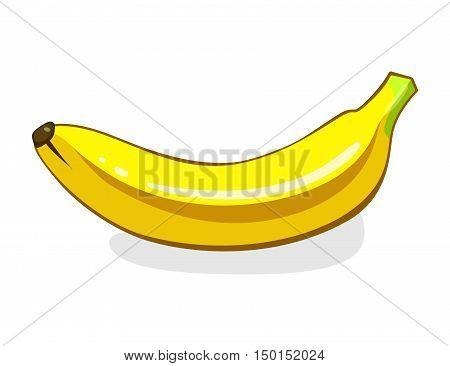 Banana. Single Ripe yellow Fruit. Vector illustration isolated on white background. Eco vegetarian food.
