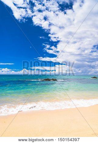 Sunshine Surf Shore Landscape
