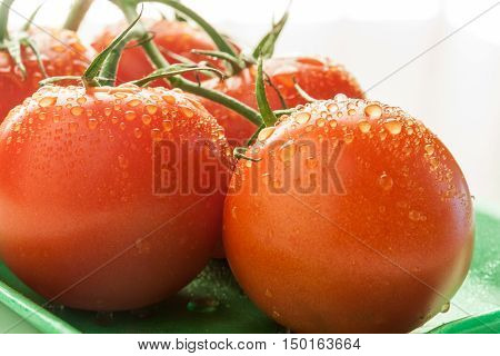 Close up of red tomatoes with water drops