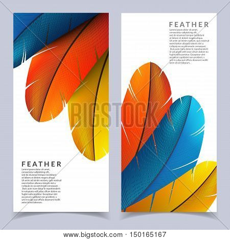 Colorful feather banners set. Beautiful bird feathers composition. Eps10 vector illustration.