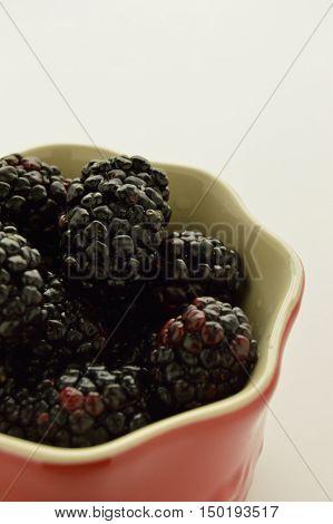 Studio shot of a red ramekin filled with blackberries.
