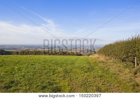 Vale Of York From A Green Meadow