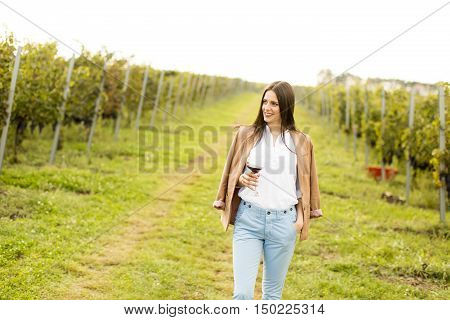 Woman With Glass Of Wine In Vineyard