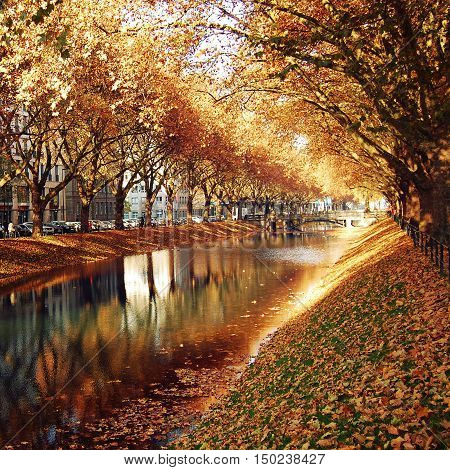Golden Trees Reflecting in the canal. Autumn photo. View of the historic avenue Koenigsallee (King's Avenue) Dusseldorf Germany