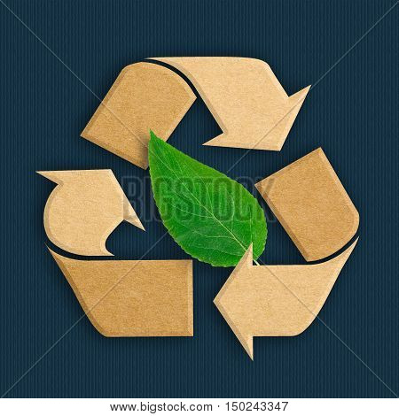 Recycle logo from recycled cardboard with natural green leaf