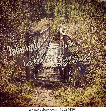 beautiful instagram of wooden bridge in the forest