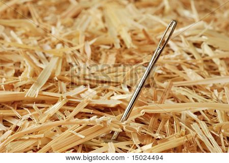 Needle in a haystack.  Macro with shallow dof.