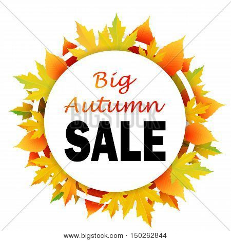 Autumn discount. Vector fall leaves. illustration with colorful autumn leaves.