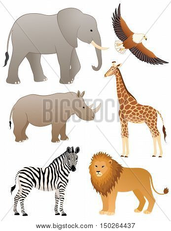 Collection of african animals: lion, zebra, elephant, rhinoceros, sea eagle and giraffe. CMYK colors.