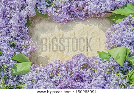 Lilac Flowers On Old Paper Background.