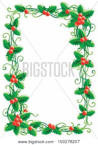 Christmas decoration with holly. Vector christmas holly border   isolated on white background