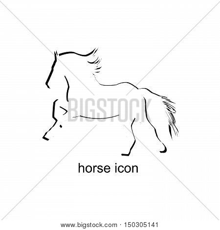 Horse stylized icon isolated on white background