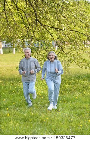 Happy fit senior couple jogging in  park