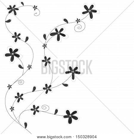 black and white flowers hand drawn vector
