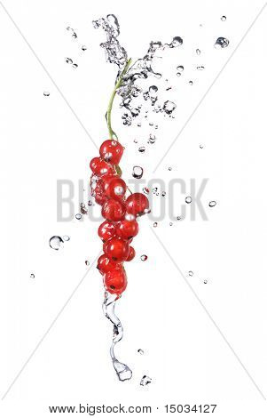 redcurrant and water drops isolated on white