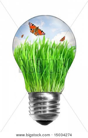 Natural energy concept. Light bulb with summer meadow and butterflies inside isolated on white