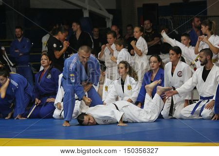 BELGRADE,SERBIA - SEPTEMBER, 24, 2016: Fighters demonstrate actions at martial arts evening