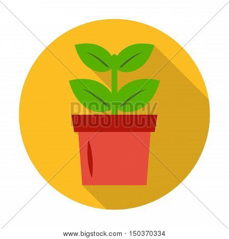 seedling, pot flat icon with long shadow for web design
