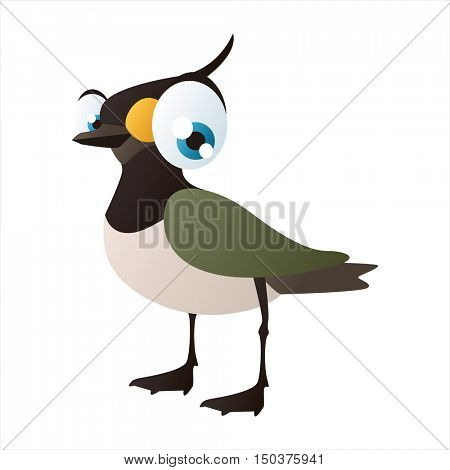 vector cute isolated animal character illustration. Bird. Funny Peewit