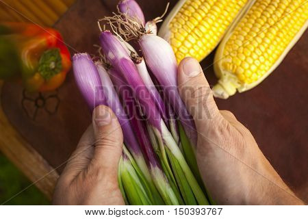 Hands holding fresh spring onions over wooden table with vegetables