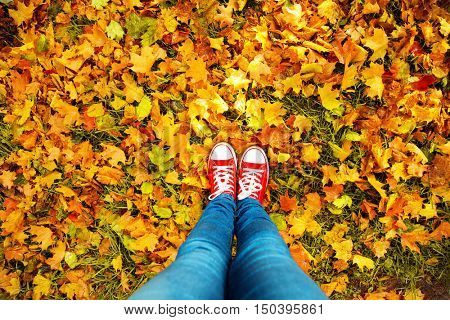 Conceptual hipster style image of legs in boots, trendy gumshoes on background of autumn leaves. Feet shoes walking in fall season  nature