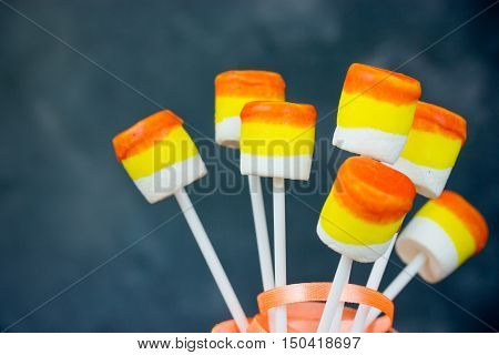 Marshmallow pops. White marshmallow on stick dipped in chocolate American cuisine