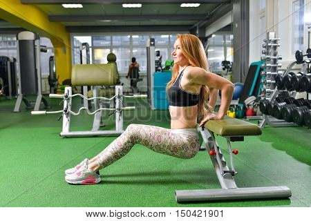Fitness, sport, exercising lifestyle - Fit woman doing triceps dips at gym. Exercises with own body weight..