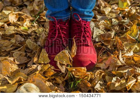 Girl in red shoes standing on fallen leaves in the park. Autumn sunny day dry yellow leaves underfoot.