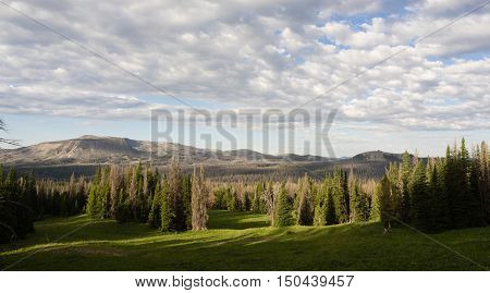 Clouds Pass Over Shoshone National Forest Wyoming