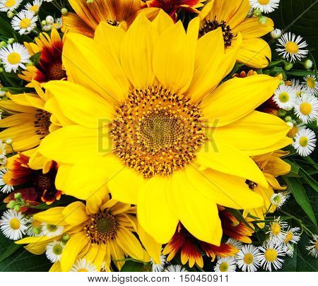 bouquet of sunflowers and daisies - close up