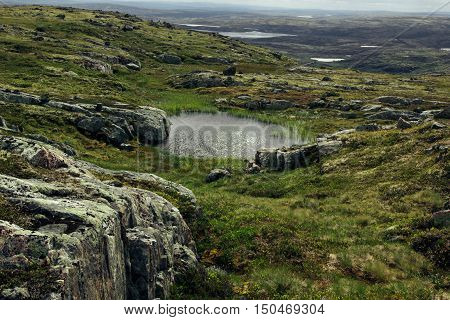 Arctic alpine meadows and lakes in sunny day. Arctic summer the tundra Norway.