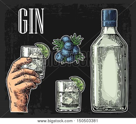 Glass and bottle of gin and branch of Juniper with berries. Vintage vector engraving illustration for label poster web invitation to party. Isolated on dark background