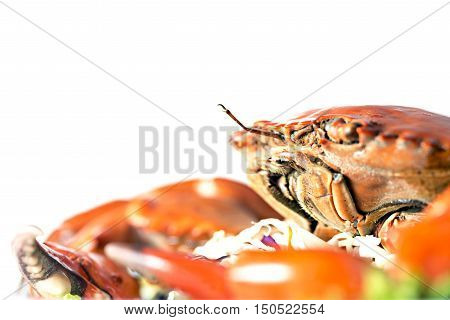 red boiled crab isolated on white background