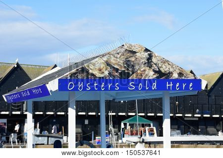 Whitstable United Kingdom - October 1 2016: Oysters for sale on outdoor sign