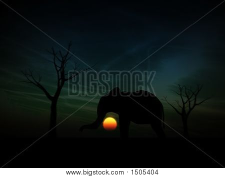 An image of an elephant silhouette with a African sky background. poster