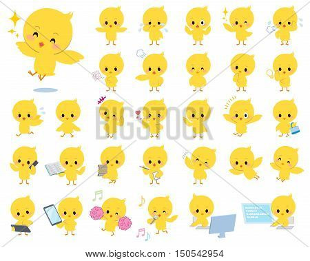 Set of various poses of baby chick yellow bird