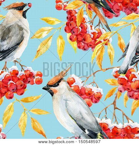 Beautiful pattern with nice watercolor waxwing bird and mountain ash