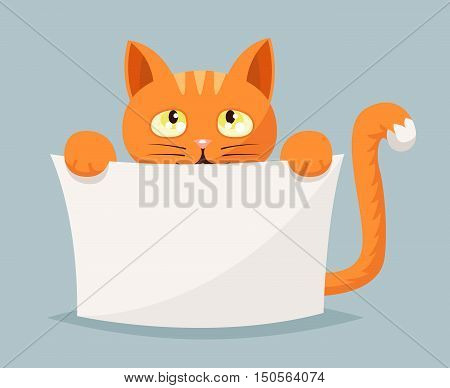 Cat beggar and help animals cartoon character vector illustration
