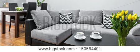 Modern Relax Area